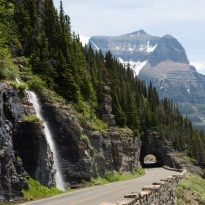 Waterfall and forest along road in Glacier National Park